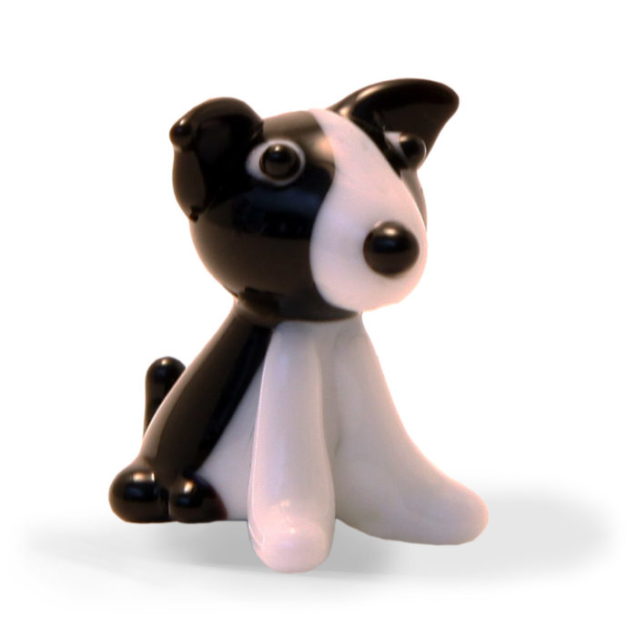 Small Glass Collie Dog
