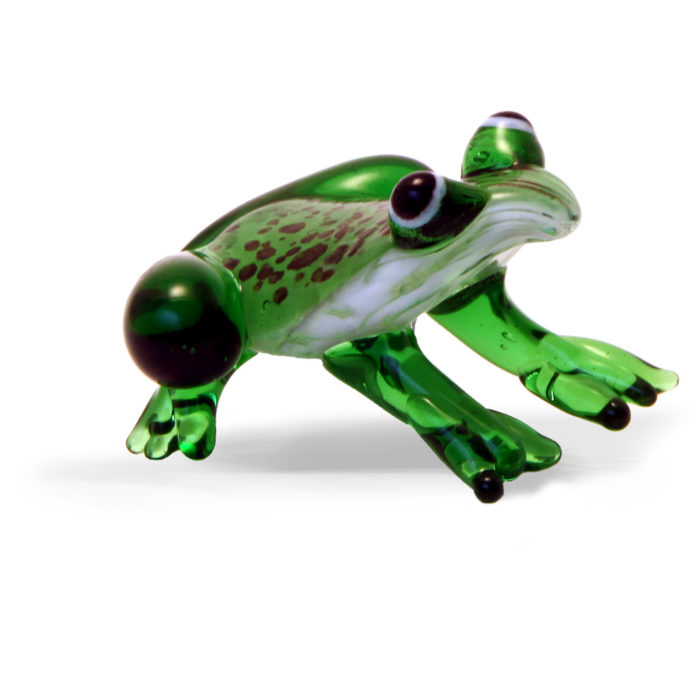 Large Glass Frog